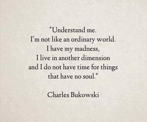 quotes, charles bukowski, and soul image