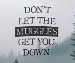 book, harry potter, and cute image