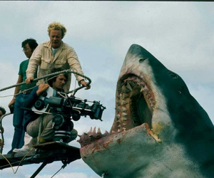 cinema, jaws, and making of image