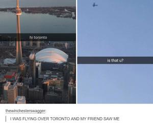 funny, toronto, and tumblr image