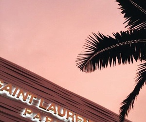 pink, paris, and palms image
