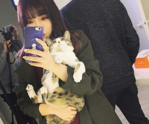 asian, cat, and girl image