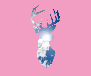 animals, moose, and pink image