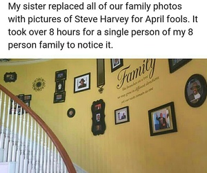 funny, funny pictures, and pranks image