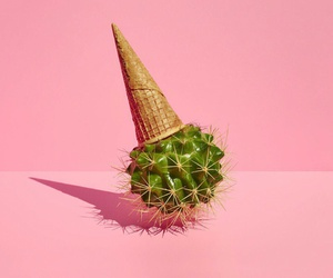 pink, cactus, and ice cream image