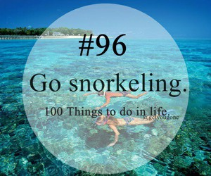 go and snorkeling image