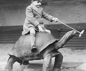 turtle, boy, and vintage image