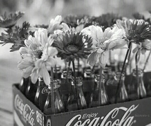 black and white, coca cola, and flowers image
