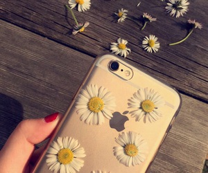 apple, beauty, and flowers image