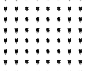 black and white, black rose, and pattern image