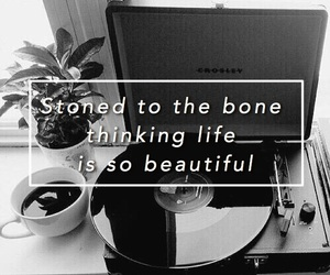 black and white, quotes, and tumblr image