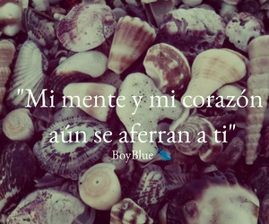 amor, colors, and frases image