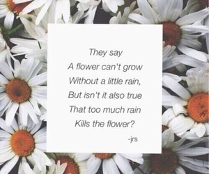 flowers, sad, and quotes image