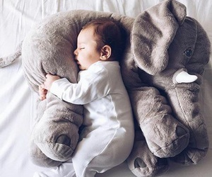 baby, elephant, and kids image