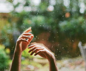 rain, hands, and nature image