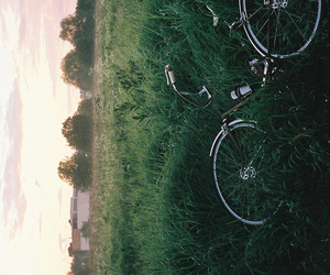 vintage and bike image
