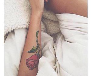 rose, enchanted rose, and tattoo image