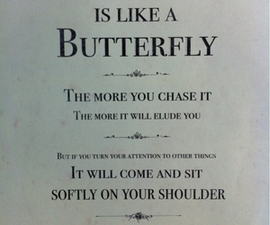 quotes, butterfly, and happiness image