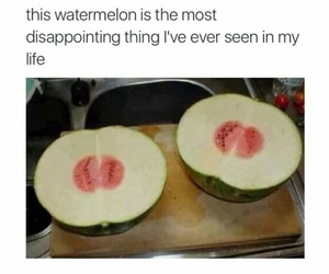 lol, funny, and watermelon image