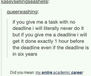 funny, tumblr, and deadline image