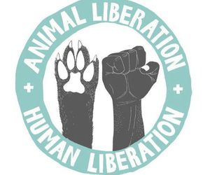 animal rights image