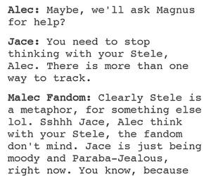 goals, alec lightwood, and magnus bane image