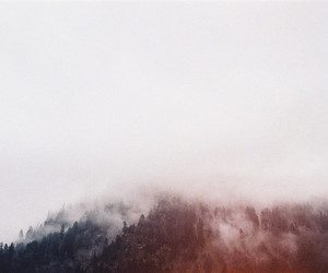 fog, mountains, and forrest image