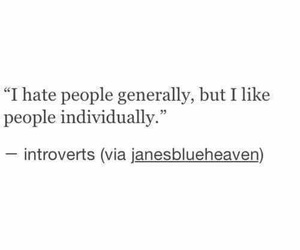 people, quotes, and introvert image