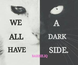 barbie, black, and cat image