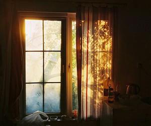 window, sun, and autumn image