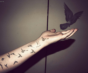 tattoo and birds image
