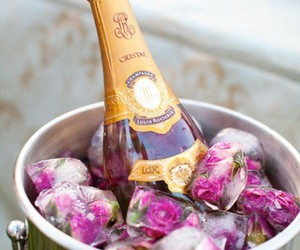 champagne, rose, and flowers image