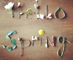 hello spring and goodbye winter image