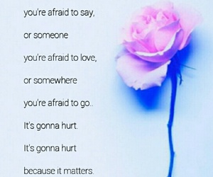 blue, quote, and rose image