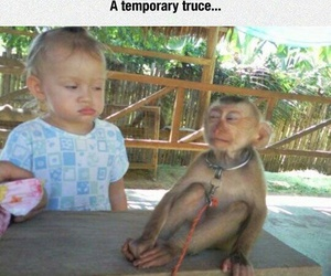 funny, kids, and monkey image