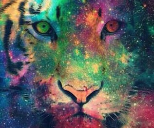 wallpaper, galaxy, and tiger image