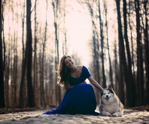 dog, pet, and dress image