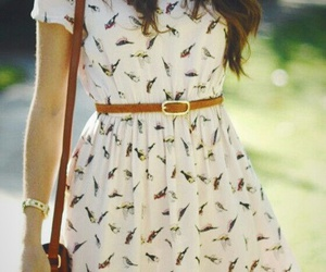 dress, summer, and bird image
