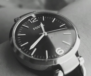 black, fossil, and white image