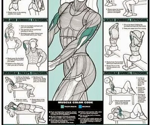 workout, fitness, and back image