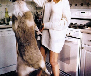 dog, Jennifer Aniston, and animal image
