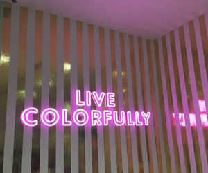 neon, pink, and colorful image