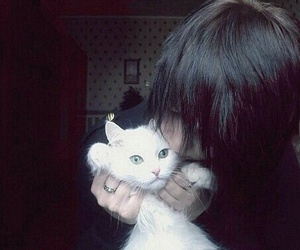 cat, emo boy, and cute image