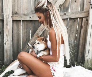 dogs, long hair, and pets image