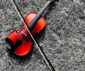 music, red, and violin image