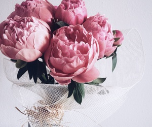 flowers, gift, and peonie image