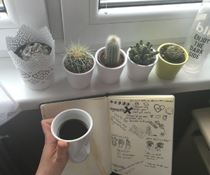 cactus, grunge, and coffee image