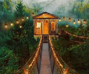 light, house, and forest image
