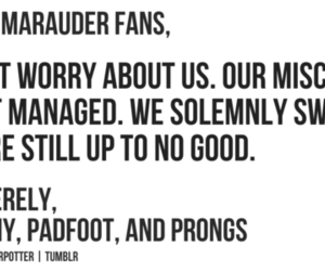 harry potter, marauders, and padfoot image