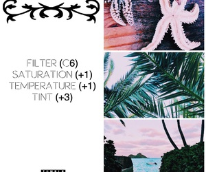 aesthetic, filter, and tumblr girls image